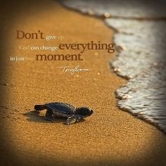 Don't give up, God can change everything in just one moment.