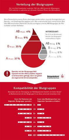 Die Bestandteile des Blutes