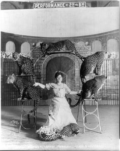 Lady and leopards  Bostock's trained animals,... - Back then...