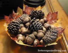 really cute & clever DIY leaf bowl.  Perfect for thanksgiving/fall decor!
