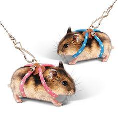 Kết quả hình ảnh cho Hamster Leash