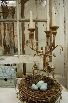 Birds nest with candles.  Photo taken by @Kimberly Hodge