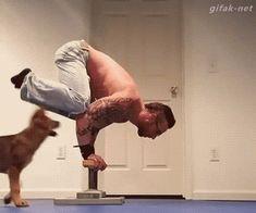 Y por eso no es buena idea hacer ejercicio teniendo un cachorrito en la habitación