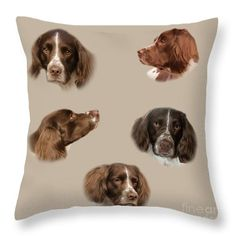 Variations of a Spaniel - artwork by Linsey Williams  #springerspanial #dogs #throwpillows via @lin_dies