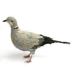 Birds / abigailbrown