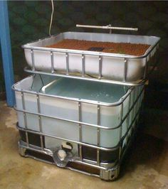 Aquaponics IBC. At Morning Star Fishermen we have a system similar to this, and it's been great. These folks are asking two-thousand dollars but you could DIY for about three hundred.