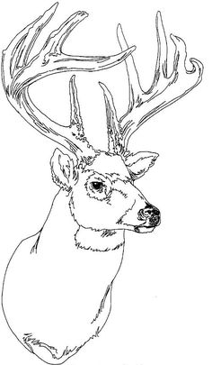 adult coloring pages deers - Google Search