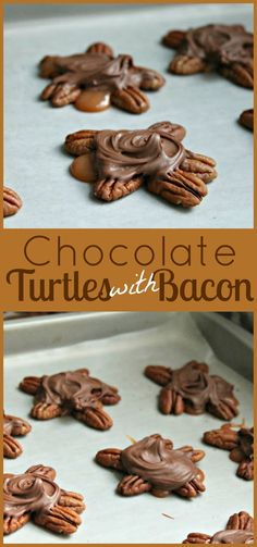 Turtles, Dried fruit and Sandwiches on Pinterest
