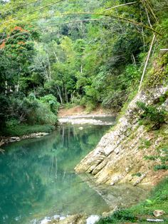 The Great River- Montego Bay, Jamaica