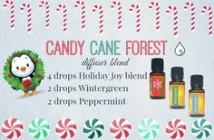 Candy Cane Forest diffuser blend (4 drops Holiday Joy, 2 drops each Peppermint & Wintergreen)
