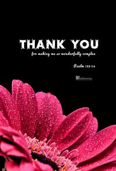 Thank you ....