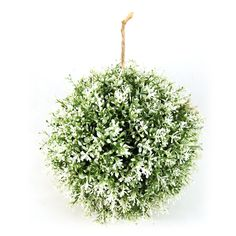 Frosted Round Boxwood Topiary