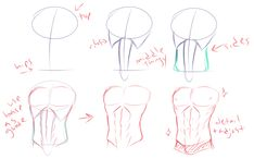 - How do you man titties? (any tips on getting better at male anatomy, especially on chest/torso?) well i have this thing i drew a couple months back to show how i break torsos into shapes/eyeball them. Drawing Male Anatomy, Drawing Body Poses, Body Reference Drawing, Anatomy Sketches, Body Sketches, Guy Drawing, Anatomy Art, Art Reference Poses, Drawing Tips