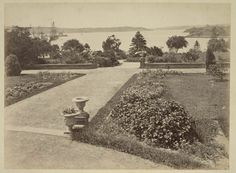 Historical Images, Cgi, Continents, Botanical Gardens, Old Photos, Sydney, Natural Beauty, Sailing, Past