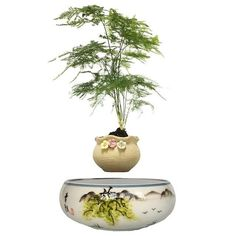 Type: Pots,Vase Ceramic Type: Pottery Finishing: Not Coated Material: Ceramic Used With: Flower/Green Plant Model Number: Style: Pastoral Usage Condition: Desktop Green Plants, Potted Plants, Plant Pots, Floating Plants, Garden Pots, Bonsai, Vase, Flowers, Tech