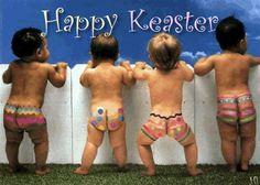 >^..^< ❀ ӇᎧᖘᖘƴ ؏ᎯᎦƬ؏Ʀ ❀ >^..^< Wishing you all a lovely day!
