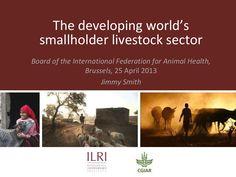 The developing world's smallholder livestock sector    by ILRI via slideshare, 25 Apr 2013