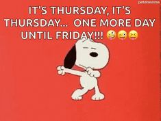 The perfect Snoopy OneMoreDay Friday Animated GIF for your conversation. Discover and Share the best GIFs on Tenor. Happy Thursday Quotes, Thursday Humor, Good Morning Snoopy, Good Morning Happy, Charlie Brown Quotes, Charlie Brown And Snoopy, Snoopy Love, Snoopy And Woodstock, Peanuts Cartoon