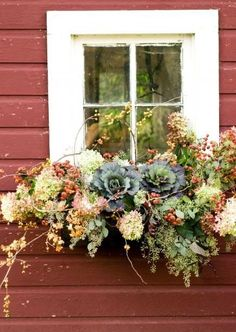 Alexander's Travel: A window box adds living personality to your home. Sun or shade, there is a combo that will suit your setting and style.