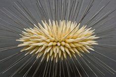 Akbank Sanattan 25. Yıl Sergisi: Garip Meyve