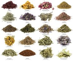 Herbal Remedies For Panic Attacks - Many herbs for soothing anxiety and panic attacks.