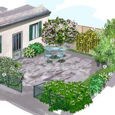 Projet aménagement jardin : Jardin cour