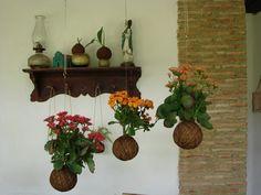 Kokedama Kalanchoe. #Kokedama #kokedamavenezuela #Kokedamave #Kokedama #jardín #artebotanico #Kalanchoe #Yaritagua #Yaracuy #Lara #Barquisimeto