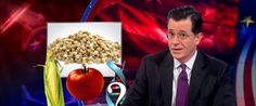 Colbert On Washington GMO Labeling: 'Questioning What's On Your Plate Is Un-American' (VIDEO) www.truecelebrity.com