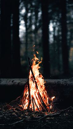 Wallpaper of fire burning frame in night dark backgrounds. Screen Wallpaper, Nature Wallpaper, Wallpaper Backgrounds, Fall Backgrounds Iphone, Beautiful Wallpaper, Dark Backgrounds, Mobile Wallpaper, Fire Photography, Amazing Photography