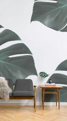 monstera_leaf_tropical_wallpaper_mural