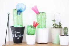 pet-bottles-upcycled-cactus-light-look-what-i-made
