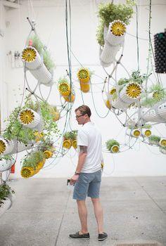 Venice Biennale of Architecture, sustainable indoor gardens