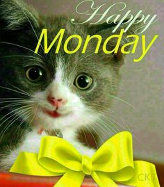 Happy monday greetings more pinterest mondays happy monday mondays voltagebd Gallery