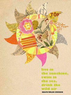 susan black | live in the sunshine, swim in the sea, drink the wild air - Ralph Waldo Emerson