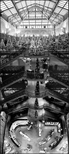 La Samaritaine (Paris, France) l'escalier double
