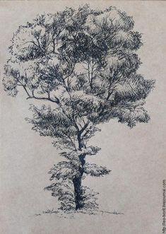 Lovely tree.