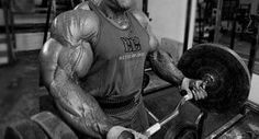 Testosterone Boosting: Taming the Beast Within [What You Need to Know]  Read here: http://militarygradenutritionals.com/blog/best-dietary-supplements/testosterone-boosting-taming-the-beast-within-what-you-need-to-know/ #testosterone #sports_training #musclebuilding #bodybuilding