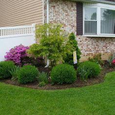 Front-yard-landscape (32)
