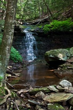 Worlds End State Park, PA