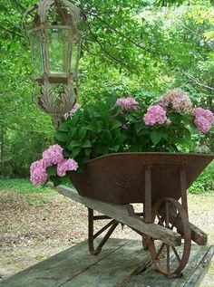 Eu quero um carrinho de mão com flores...