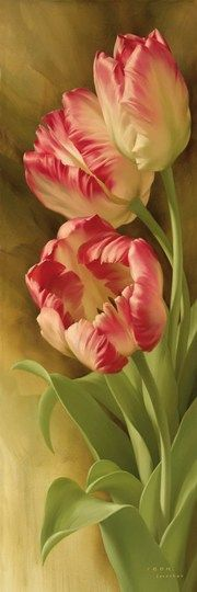 Spring's Parrot Tulip II - Many lovely pictures available at this site.