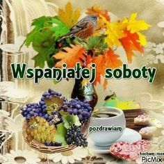 Good Morning Funny, Morning Humor, Plants, Polish, Pictures, Plant, Planets