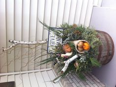 Spruce tips Thanksgiving theme! Spruce Tips, Pine Cones, How To Look Pretty, Evergreen, Harvest, Pots, Christmas Wreaths, Container, Thanksgiving