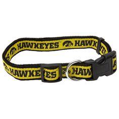 Iowa Hawkeyes Ncaa Pet Collar, Multicolor