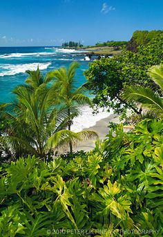 Hamoa Beach, Maui, Hawaii.                                                                                                                                                     Plus