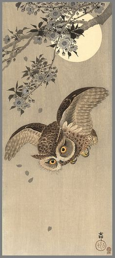 Koson  A scops owl flying past a flowering cherry tree; the full moon behind,  ca.1910