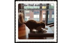 Paw Pad, Pet Furniture, Cat Scratching, Pets, Products, Gadget