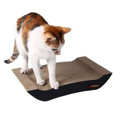 4b552e09e79c PetCheer Scratching Pad (Black) - BabyCat Collection Cat Scratcher 13.9''L  >