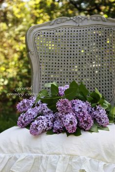 A Bouquet of Lilacs... - FRENCH COUNTRY COTTAGE