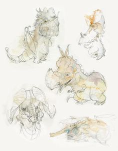 dragons_selection